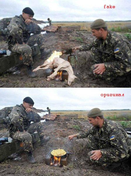 Животные в зоне АТО - боевые побратимы украинских солдат - Цензор.НЕТ 3391
