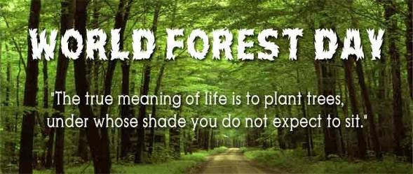Celebrating #WorldForestDay we urge everybody to actively involve themselves to plant more trees! #worldforestday https://t.co/h9I0v0Mx2R