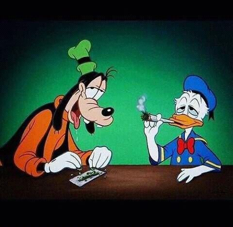 Goofy high on weed