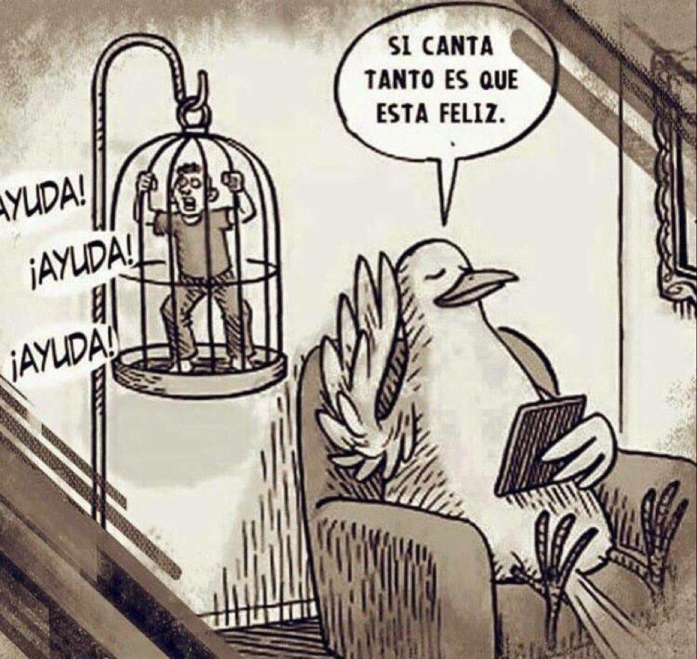 """Natura M. Ambiental på Twitter: """"Sobre tener aves enjauladas ..."""