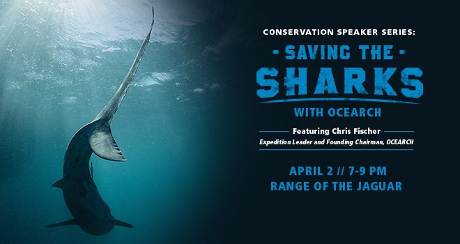 Join the Zoo and @OCEARCH as @ChrisOCEARCH talks about Saving the Sharks and #ExpeditionJAX https://t.co/3i5qvsTvv1 https://t.co/qArfCCNRcr