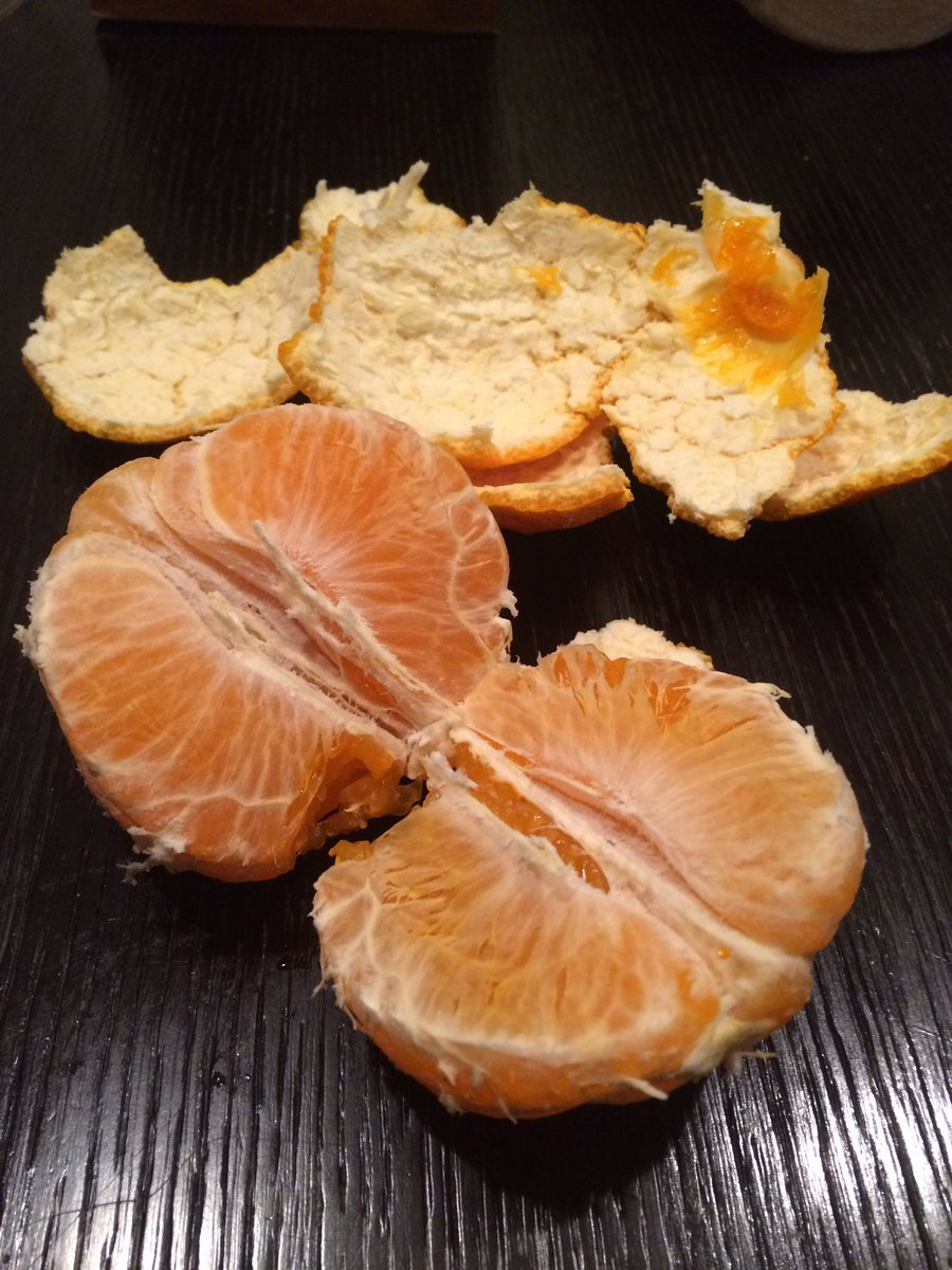 I love these oranges. There expensive but worth it Really wish I could grow one of these in FL #sumo #orange #japan