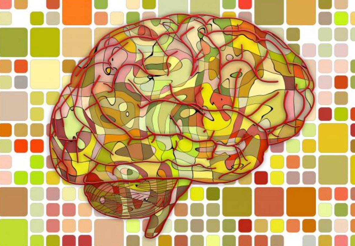 Dopamine plays an important role in several brain functions, including learning and memory. https://t.co/t7EQxZ7DZy