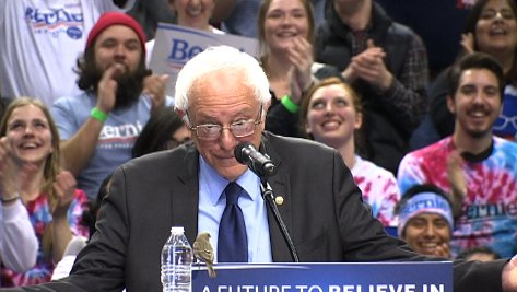 #BernieBird @BernieSanders gets a little guest at his rally - Portland, OR https://t.co/yuBLVDChmW