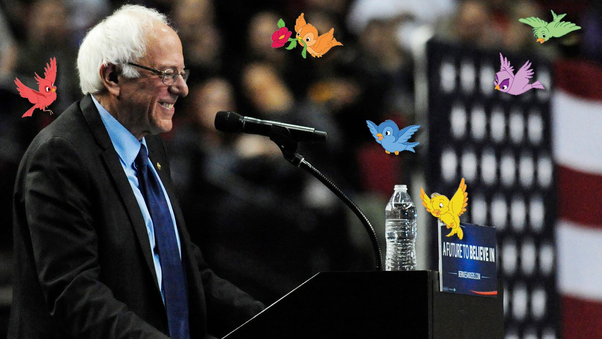 Looks like an endorsement to me #FeelTheBird #BirdieSanders @BernieSanders @People4Bernie @TulsiGabbard #FeelTheBern https://t.co/FhyjgdYONA
