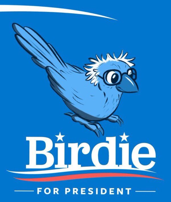 Bird Visits Bernie Sanders Rally, Sparks Delight On Twitter