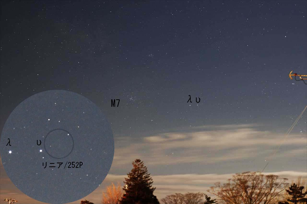 リニア彗星(252P)が明るいらしい・・・。