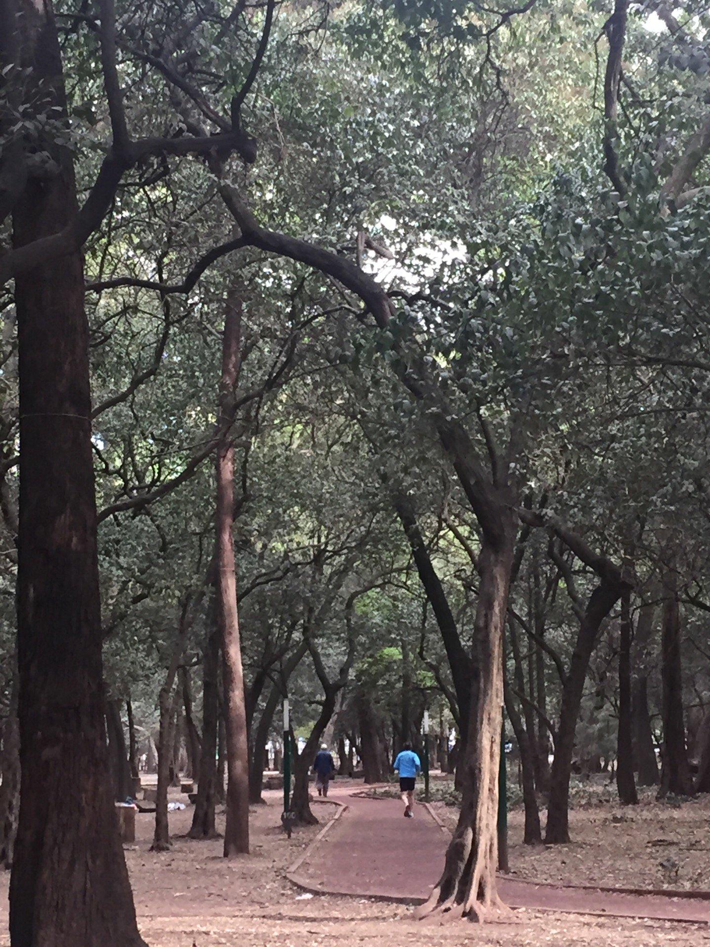 Circuito Gandhi : Melatetete : @ circuito gandhi corredores https: t