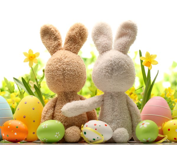 How are you spending your #Easter Sunday? https://t.co/K3YoDsdDtO
