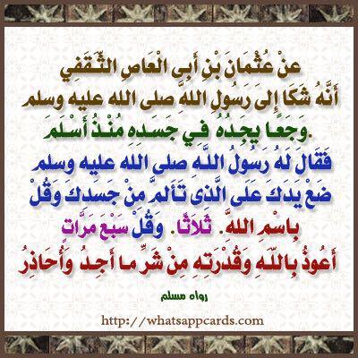 ابو مشعل Majeed053654051 Twitter
