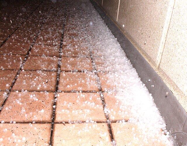 うひょー!  1cmぐらいの雹が積もってるぅ @ねりま pic.twitter.com/oL9cglh1lu