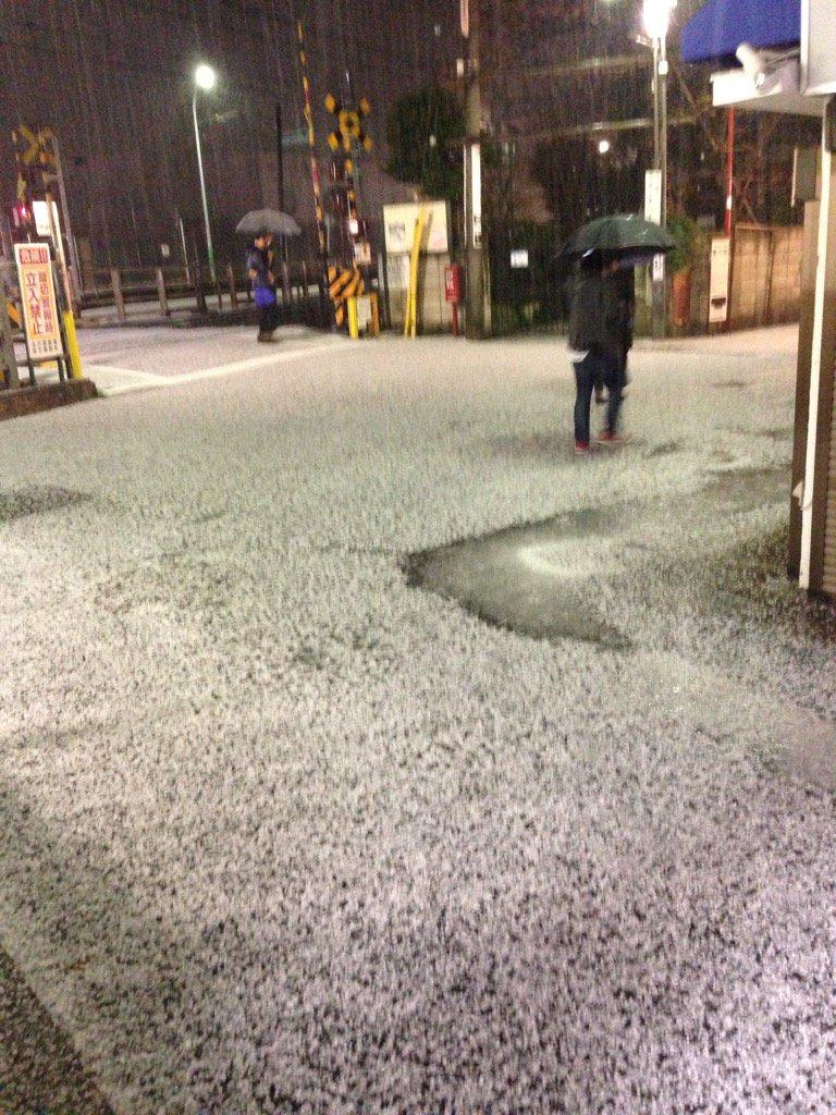雹で真っ白。こんなの56年生きて初めて。 pic.twitter.com/VtUubSlSis