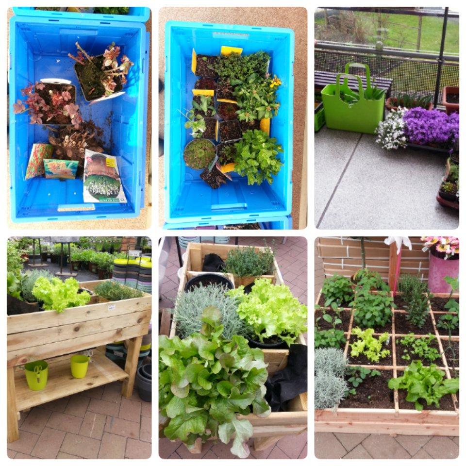 Gartencenter Schmitz land und garten on heute die gartencenter schmitz und