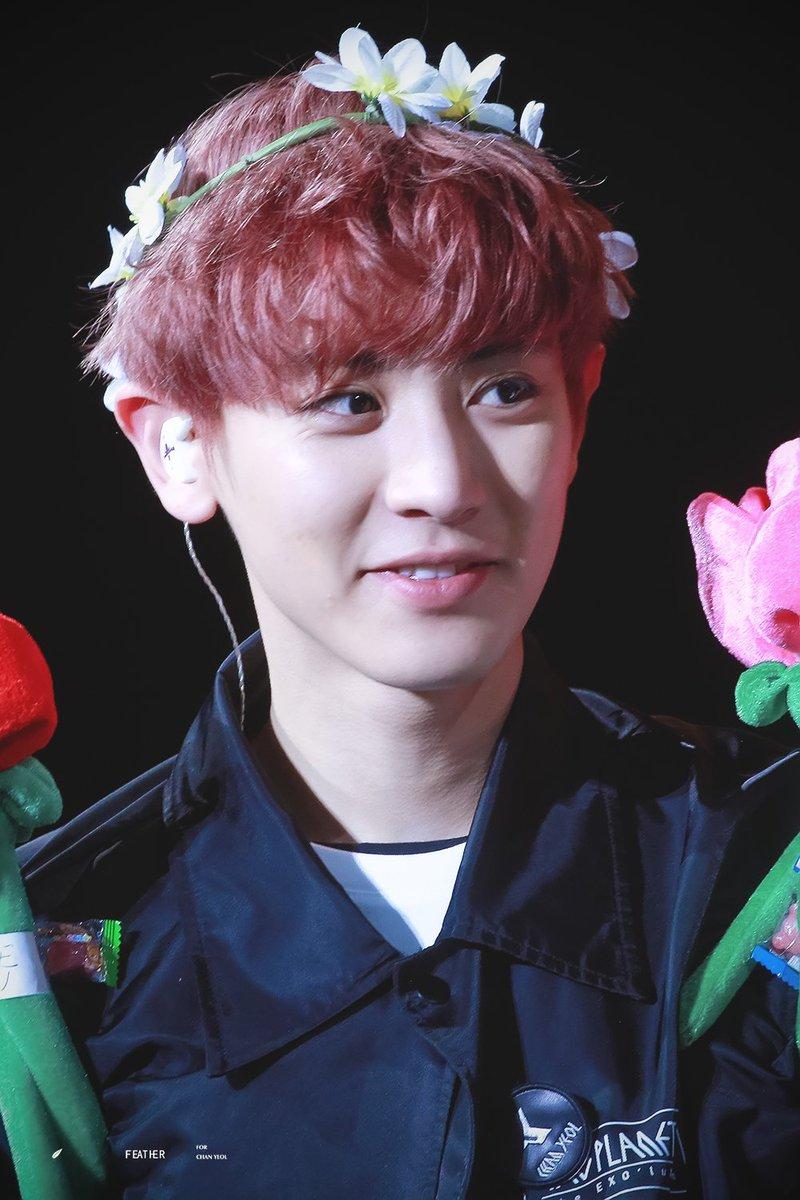 Chanyeol pics on twitter 10 chanyeol wearing flower crown https chanyeol wearing flower crownpicitterw4i55c50vi izmirmasajfo