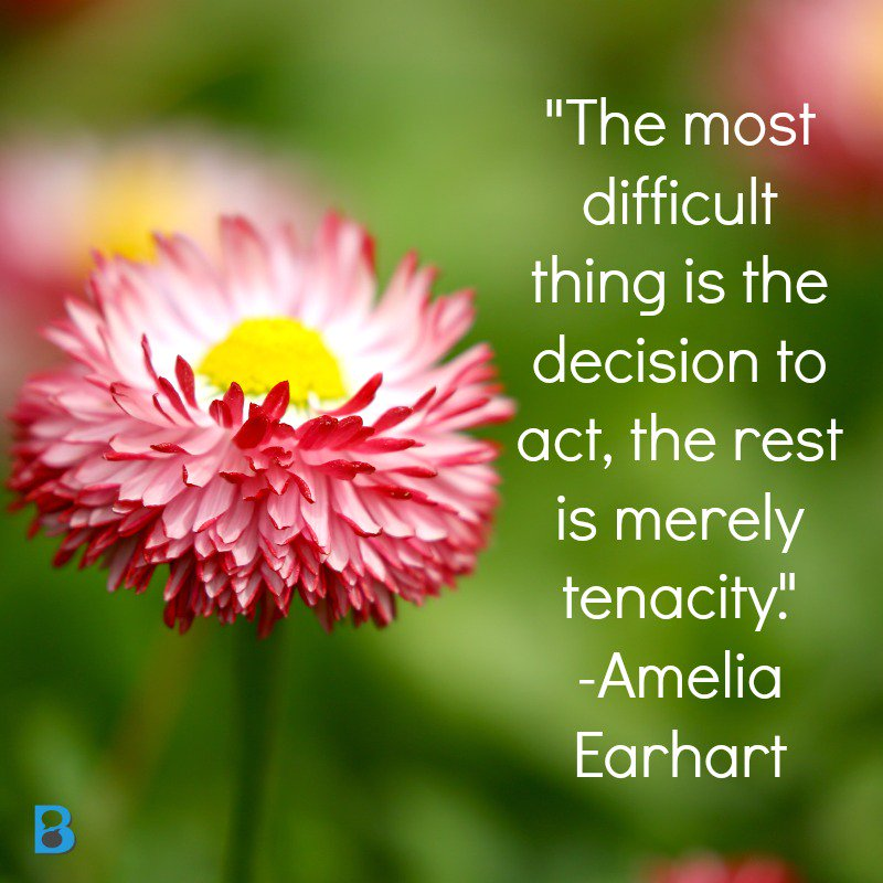 """""""The most difficult thing is the decision to act, the rest is merely tenacity."""" Amelia Earhart #biz2blogger #quote https://t.co/AowblDa5u9"""