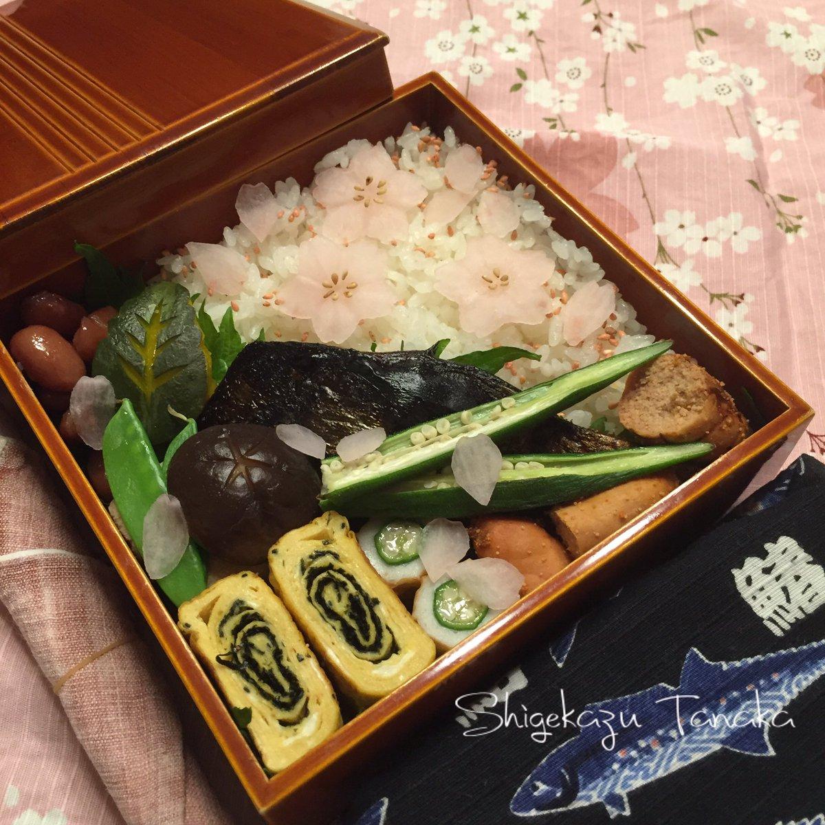おはようございます。 3月30日の親父弁当は、お花見弁当。 鰆の西京焼き、いそべ玉子焼き、焼き明太子、高野豆腐と椎茸の含み煮、南瓜のたいたん、オクラ竹輪、金時豆、絹さや、大根の桜、ごはん。 #おはよう #お弁当 #親父弁当 https://t.co/ZRARH2G0CV
