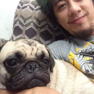 Why so sleepy pixie pango!! Haha #puglife #pug #xis #sixen #inkxis http://www.findelight.net/puggie_detail.html?id=1217123938144901535_444814117 …