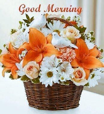 Tanvi Singh On Twitter Gud Mrng Beautiful Ppl Httpstcongavqo4ab0