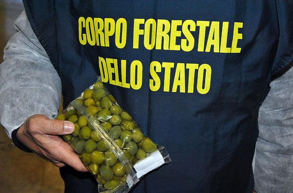 "Sequestro record di cibo ""adulterato"""
