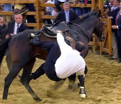 Αποτέλεσμα εικόνας για Erdogan he is trying to ride a horse