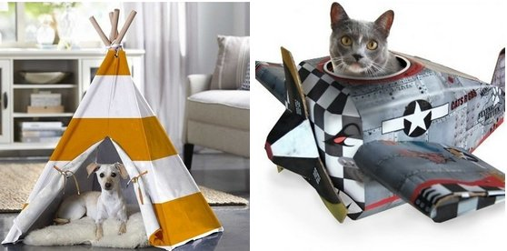 19 delightful pet products that you'll love as much as they will https://t.co/VvmchySxc5 https://t.co/lXH9iCr4wa