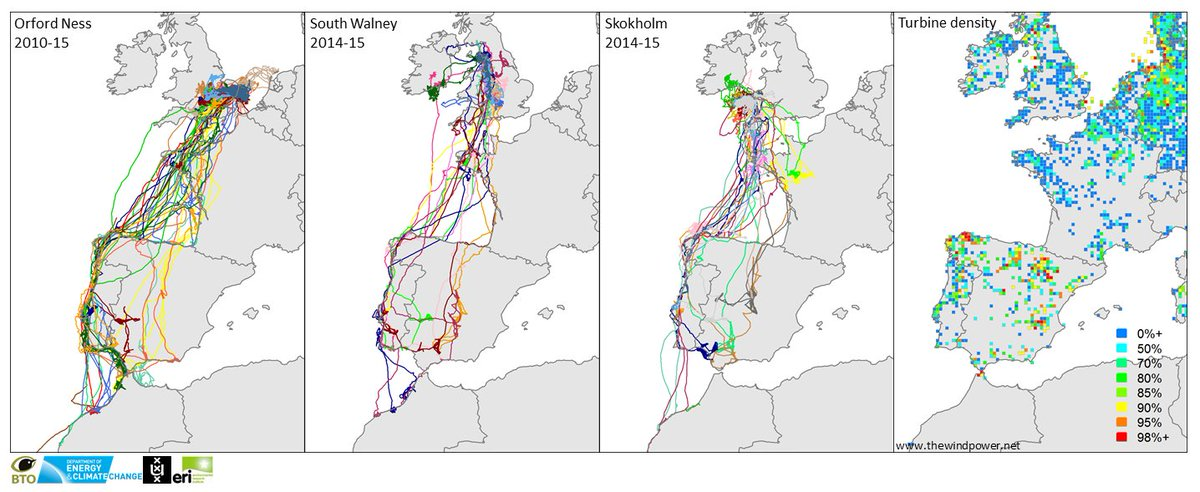 5/6 #WSTC2 Interactions between gulls and wind farms have been examined throughout the year and range extent https://t.co/AlVerUCLPg