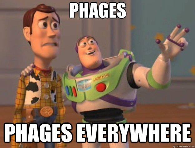 Los fagos están presentes en todas partes, en todos los ambientes, incluso dentro del cuerpo humano  #microMOOCSEM https://t.co/PgSl2vpji5