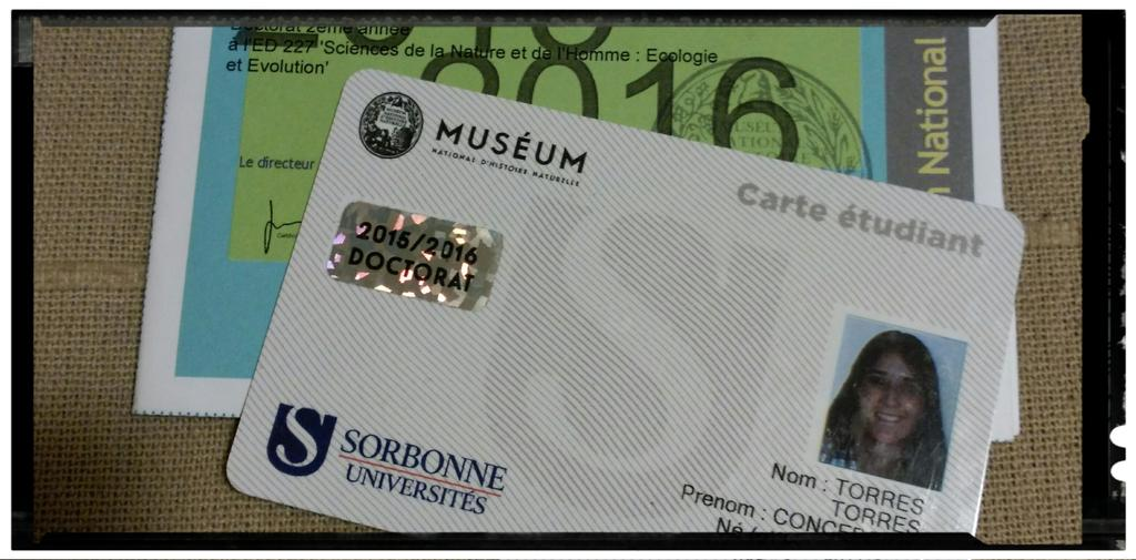 JeSuistudiant Le Museum Sorbonne U Y De Mi UAM Madrid Doctorat Phd Gazettepictwitter Z9owNr5XCB