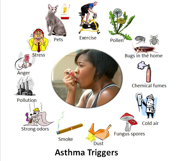 Teaching Kids About Asthama and Allergies with Wizdy Pets https://t.co/zdMU2CmJEX #gamification https://t.co/4DaVL8tX9Q