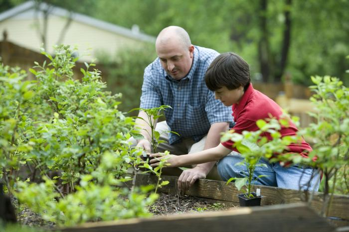 Why garden? Gardening can provide healthy food, physical activity, & fun for the whole family! #NationalGardenMonth https://t.co/sPZRIEYzxu
