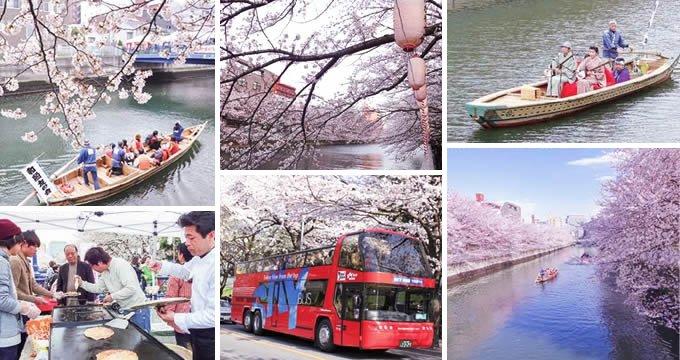 4/13(水)まで、東京・門前仲町で「お江戸深川さくらまつり」開催中!土日を中心に和船・動力船でのお花見クルーズ、オープンエアの2階建てバスでお花見観光などが楽しめますっ→