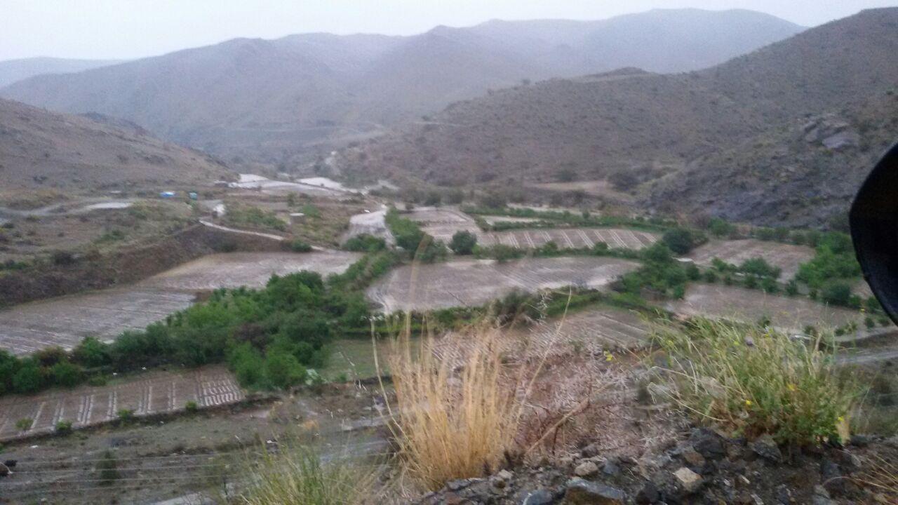 من امطار بني مالك على قري شوقب اليوم السبت 1437/6/24 CfDtqVCW8AA_prM