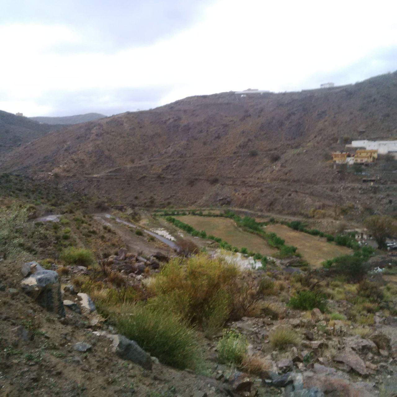 من امطار بني مالك على قري شوقب اليوم السبت 1437/6/24 CfDtus-WwAEwQyV