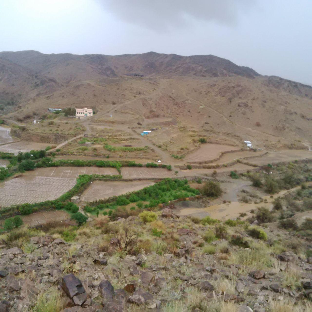 من امطار بني مالك على قري شوقب اليوم السبت 1437/6/24 CfDtxfEW8AEjYVP