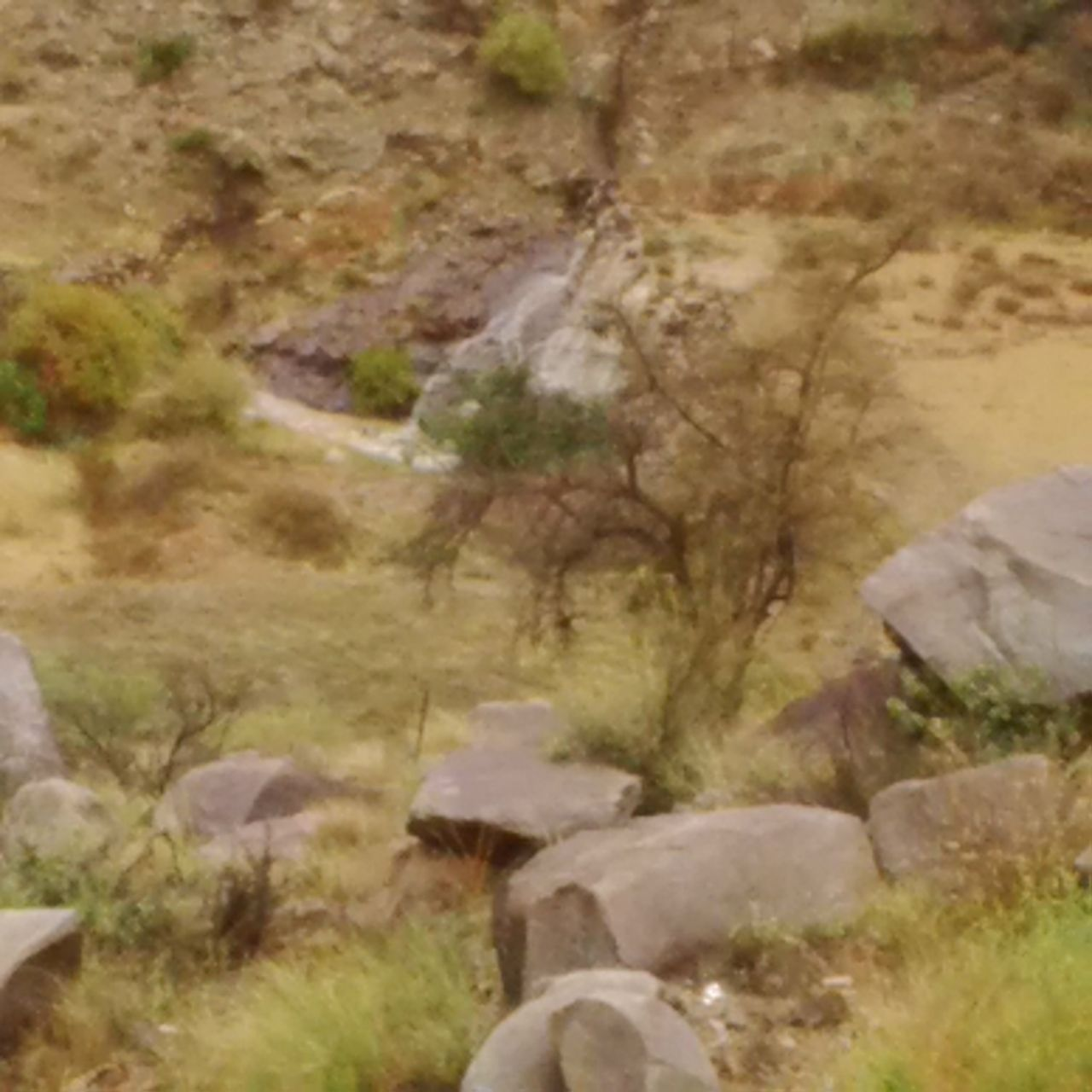 من امطار بني مالك على قري شوقب اليوم السبت 1437/6/24 CfDvi0cWwAI_9KL