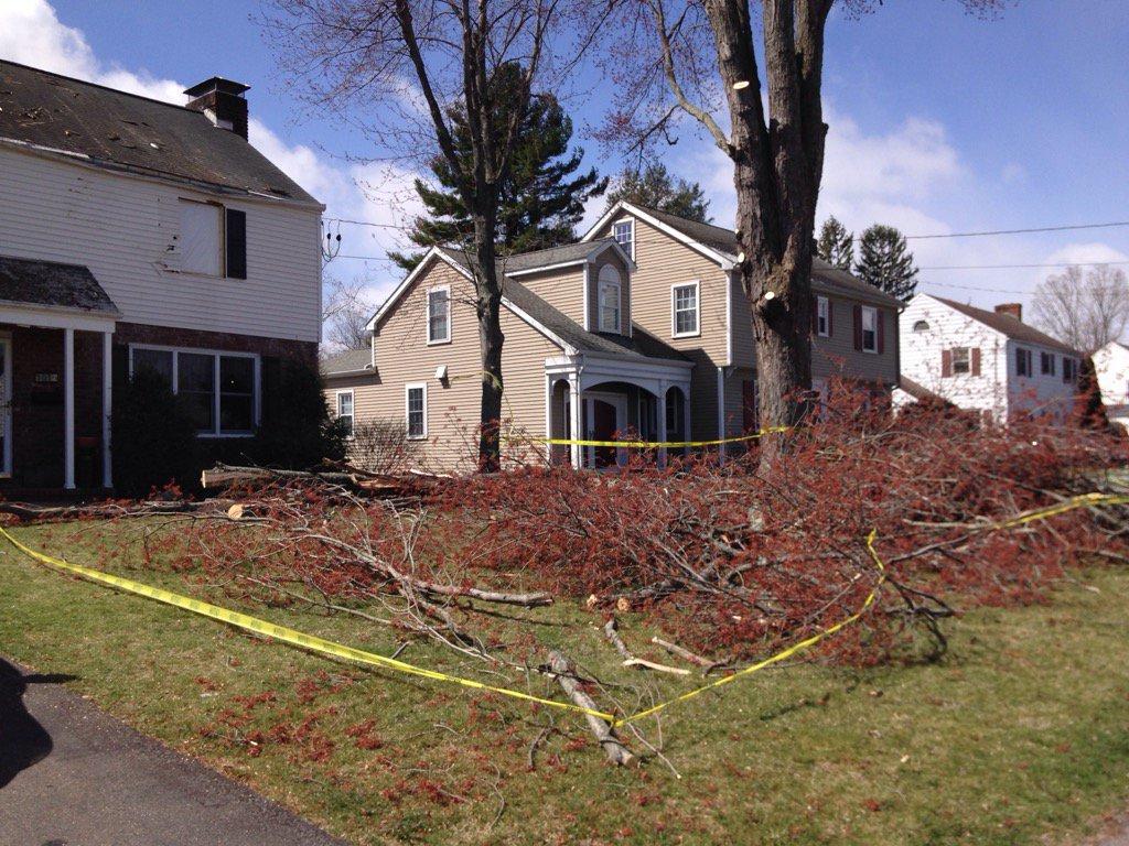 Thumbnail for  Tree falls on Kingston Mayor Steve Noble's house