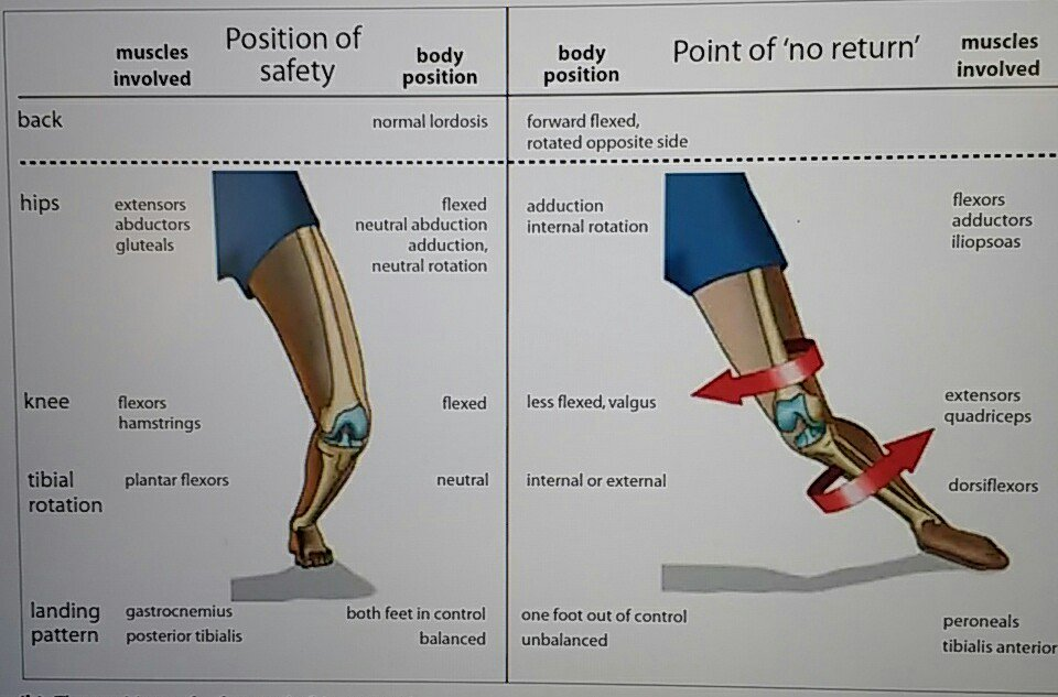 Image result for mechanism of ACL injury