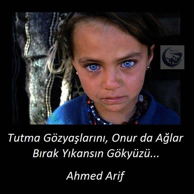 Ahmad arif