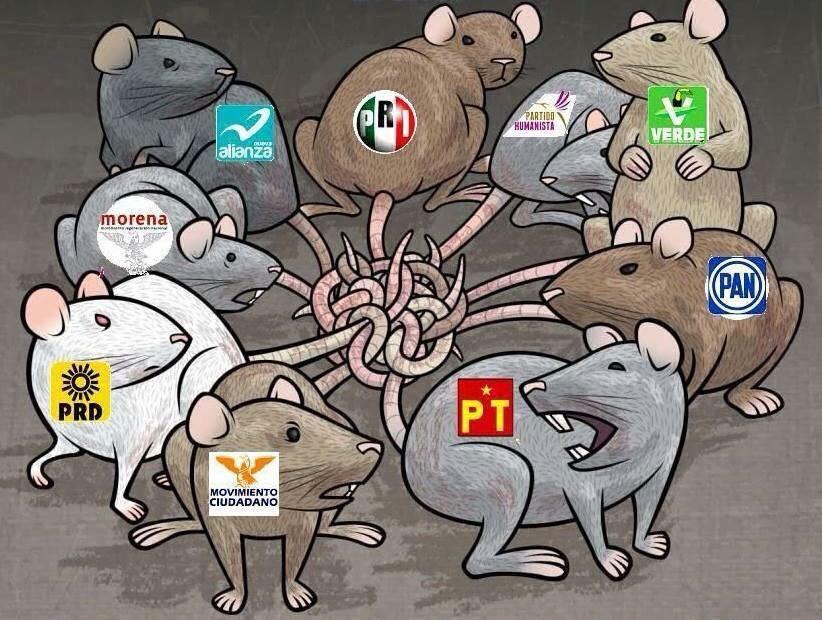 Resultado de imagen para POLITICOS RATAS