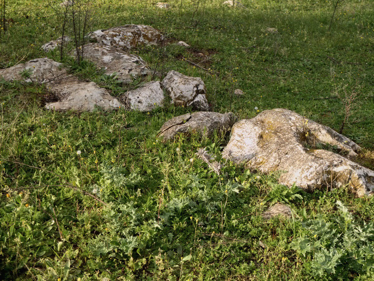 .. se la lingua nasce complessa e misteriosa. DISSODATI - Montevergine di Lecce. Marzo 2016 https://t.co/1w619MIAgP