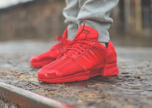 Adidas Climacool On Feet