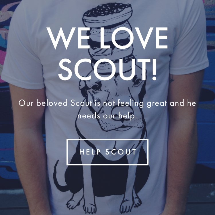 Scout shirts. Made locally. Support @stuffonscouts - additional funds will go to rescues https://t.co/nRH9AoAC33 https://t.co/jgEdJocBhF
