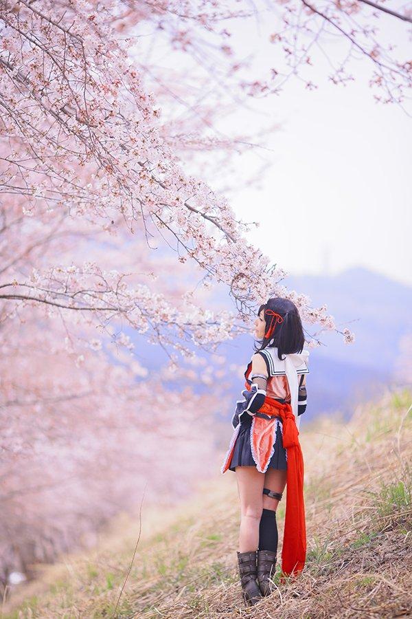 ほわほわピンクの桜満喫してきました(^^)  #艦これ #川内改二 https://t.co/mfSfAg9tHy