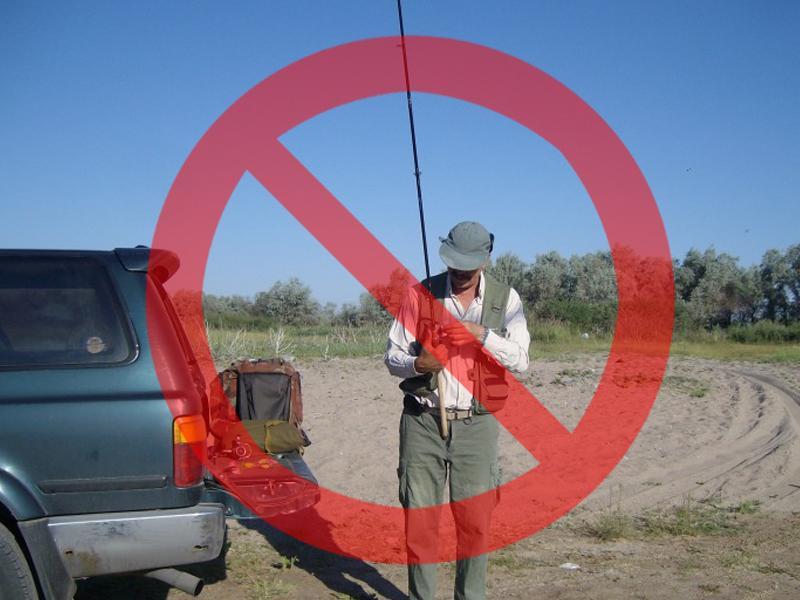 запрет на рыбную ловлю 2017 в калининграде