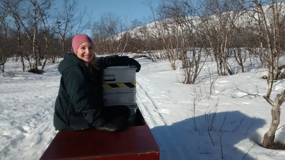 Travelling in style - @vaderflicka in cargo class seat on skidoo: https://t.co/8SoMAp8FFQ
