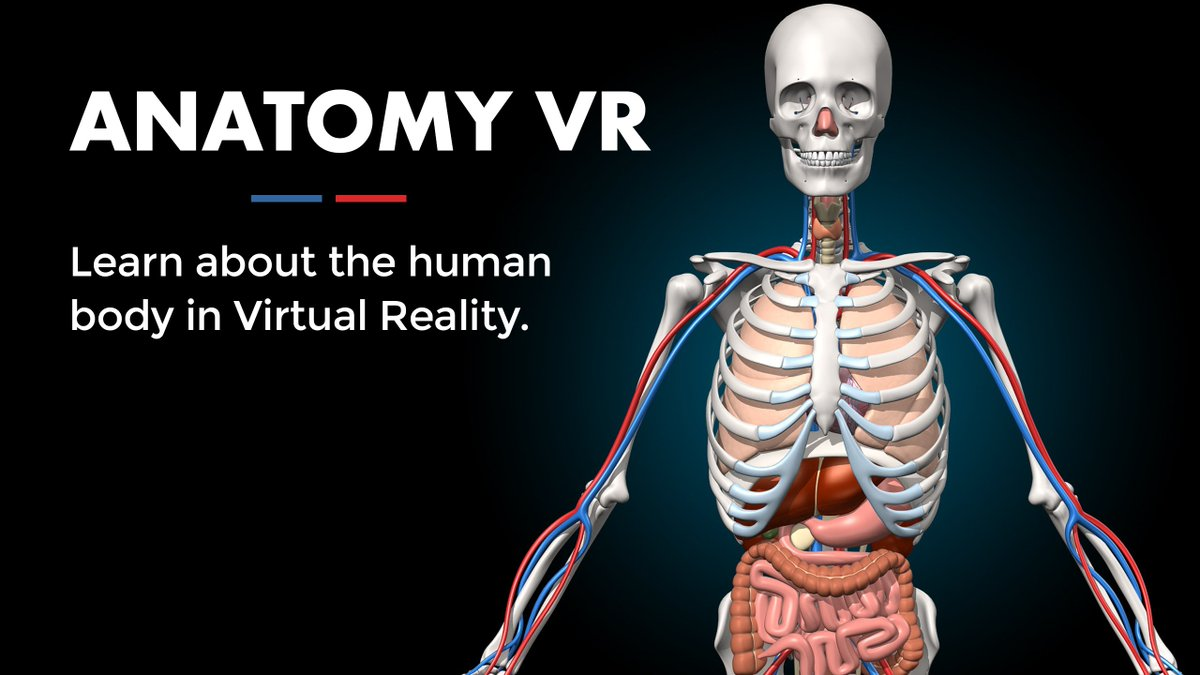 Unimersiv On Twitter Anatomy Vr Is A Gear Vr App That Will Let You