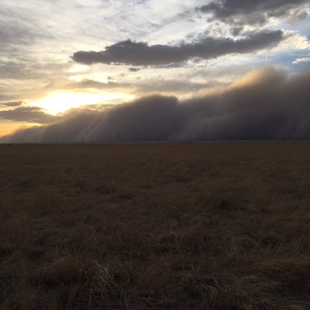 Quite the dust storm in the Panhandle today along the cold front (from a Mesonet fan near Texhoma)! #okwx #okmesonet https://t.co/ns1iWr3Q7s