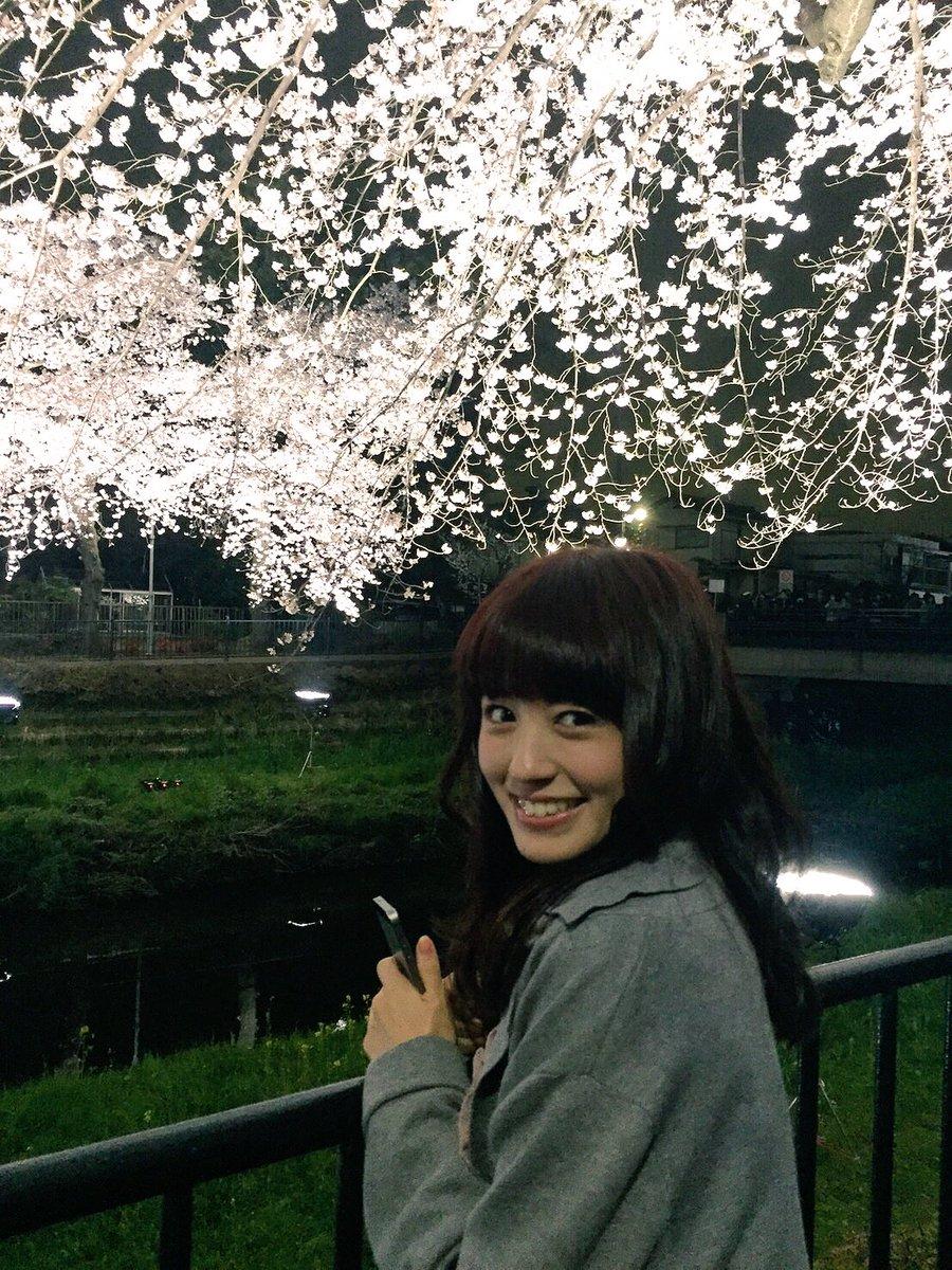 昨日、母と桜のライトアップを見てきました🌸初めて見たんですが、めちゃめちゃ綺麗だったー!写真だとうまく伝わらないのが残念、、 pic.twitter.com/4Eg7BFupXS