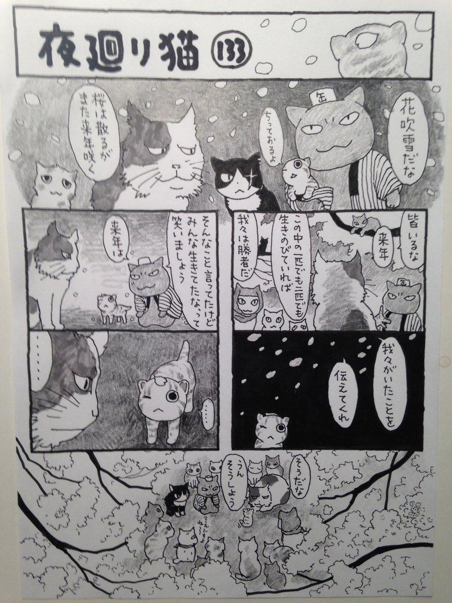 猫 夜 廻り