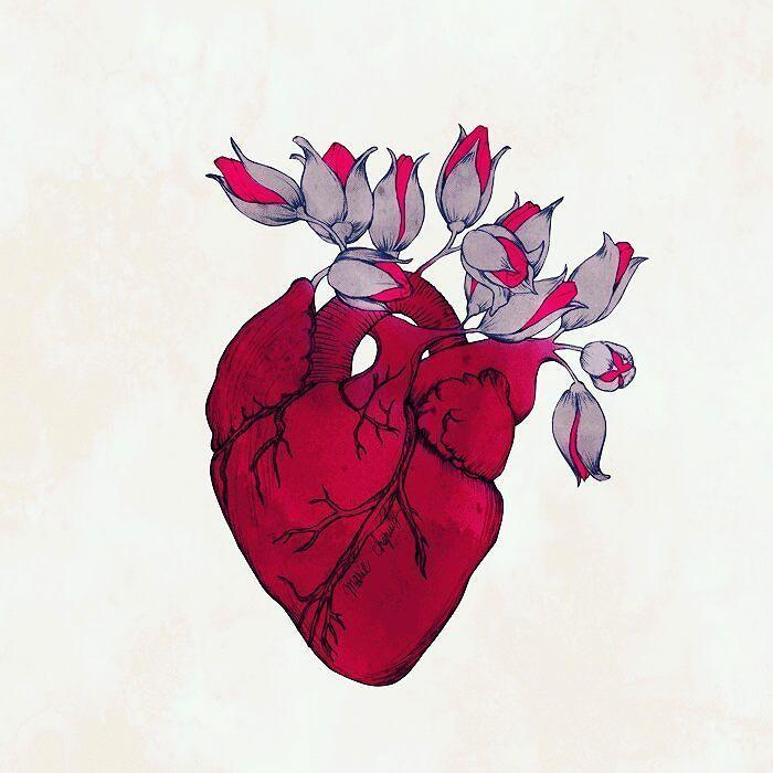 "Valentina Diaz On Twitter: ""#Tumblr #chile #corazón #heart"